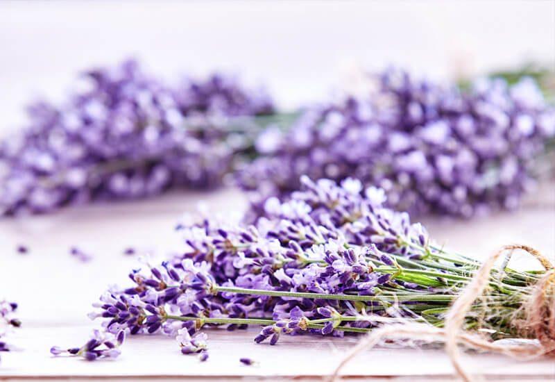 Aromaterapija sa lavandom koja umiruje i uspavljuje